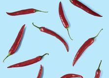 Flat lay red chili peppers pattern royalty free stock photos