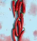Flat lay red chili peppers pattern stock images