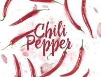 Flat lay red chili peppers pattern on white background. Top view royalty free stock images