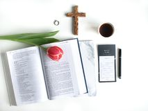 Flat lay: Red tulip, red petals and a Bible on a white table