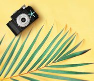 Flat lay of retro photo camera and palm leaves against yellow background minimal creative tropical concept royalty free stock photography