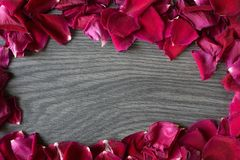 Flat lay of rose petals making a circle leaving a blank space f stock photos