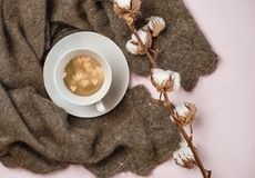 Russian woolen shawl with cup of coffee with hearts inside and cotton branch on pink pastel color background. Romantic winter royalty free stock photo