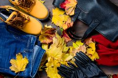 Flat lay set of  Feminine clothe  in autumn style. Collage of Feminine  clothing and accessories. jeans, shoes, scarf, gloves, bag and glasses  for autumn day in Royalty Free Stock Photos