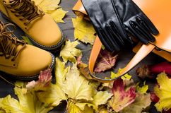 Flat lay set of  Feminine clothe  in autumn style. Collage of Feminine  clothing and accessories. shoes, scarf, gloves, bag and glasses  for autumn day in yellow Stock Photography