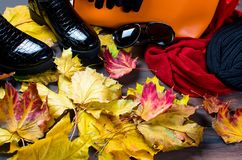 Flat lay set of  Feminine clothe  in autumn style. Collage of Feminine  clothing and accessories. shoes, scarf, gloves, bag and glasses  for autumn day in yellow Stock Photo