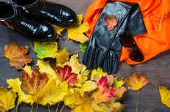 Flat lay set of  Feminine clothe  in autumn style. Collage of Feminine  clothing and accessories. shoes, scarf, gloves, bag and glasses  for autumn day in yellow Royalty Free Stock Images