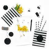 Flat lay sketch book mimosa flowers office supplies Royalty Free Stock Images