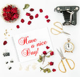 Flat lay sketchbook red rose vintage camera nice day Stock Photos