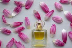 Flat lay. Top view. Delicate flowers and perfume bottle on a white background stock photo