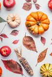Flat lay of various colorful pumpkin, apples and fall leaves on white table background, top view. Autumn composing or pattern bac. Kground , flat lay Royalty Free Stock Photo