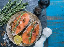 Salmon fish on a plate with spices, olive oil and lemon before cooking, flat lay royalty free stock photos