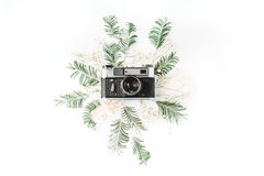 Flat lay. Vintage retro photo camera, yellow acacia and green brunches. Top view Stock Images