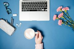 Flat lay woman office desk. Female hands with coffee and laptop,. Pink carnation, stationery on blue table. Top view royalty free stock photography