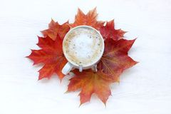 Autumn coffee break Royalty Free Stock Photo