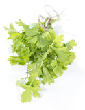 Flat Leaf Parsley (isolated on white) Royalty Free Stock Photography