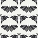 Flat line vector seamless pattern wildlife fauna, butterfly. Simplified retro cartoon style. Insect. Beetle. Entomology. Nature ornament. Forest moth Stock Photos