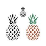 Flat logo design of pineapple. Set of flat logo design of pineapple. illustration Stock Images