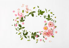 Flat nature floral round frame on white background, top view. Royalty Free Stock Photos