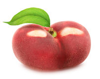 Flat nectarine with leaf. Full depth of field. Royalty Free Stock Photography