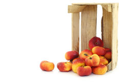 Flat nectarines in a wooden crate Stock Photos