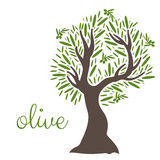 Flat olive tree. Vector Royalty Free Stock Photos