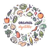 Flat organic vegetables vector illustration with a place for text or lettering. Organic farm vector concept with vegetables and custom typography. Perfect local royalty free illustration