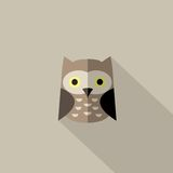 Flat owl icon. Concept education and web-icon Stock Images