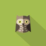 Flat owl icon. Concept education and web-icon Royalty Free Stock Images