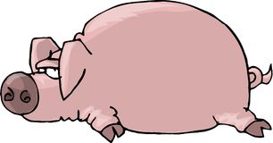 Flat Pig. This illustration that I created depicts a big, round, pink pig laying flat with its hooves out to the side Royalty Free Stock Photo