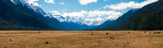 Flat plain with mountains in the background. Snow caped mountains with a grassy plain and forests stock photo