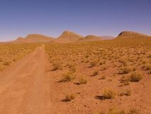 Flat plain in the north of Argentina stock photos