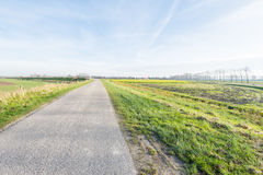 Flat polder landscape in autumn Stock Photos