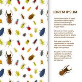 Flat poster or banner template with bugs. Vector illustration Stock Photography