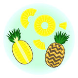 Flat  ripe pineapple set. Fruit split in a half , quarter, pine circle without rind sliced on half, quarter and piece. Cute colorful summer fruit Royalty Free Stock Images