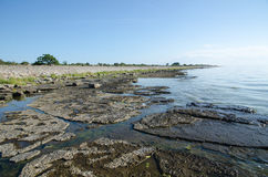 Flat rock limestone coast Stock Photo
