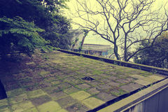 Flat roof slope Royalty Free Stock Photo