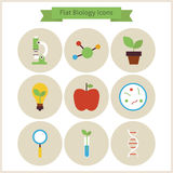 Flat School Biology and Science Icons Set Royalty Free Stock Photo