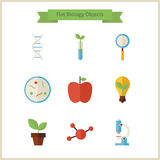 Flat School Biology and Science Objects Set Royalty Free Stock Photo