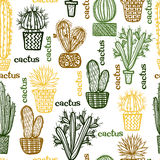 Flat seamless pattern with succulent plants and cactuses in pots. Stock Image
