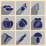 Flat with shadow concept and mobile application. Harvest Stock Photos