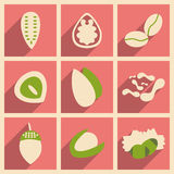 Flat with shadow concept and mobile application. Nuts icons Stock Photo