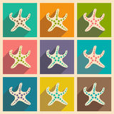 Flat with shadow icon and mobile applacation. Starfish Royalty Free Stock Images