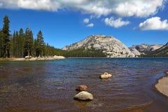 Flat shore of shallow lake Stock Photography