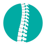Flat spine icon for orthopedic therapy, diagnostic center. Stock Photo
