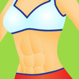 Flat Stomach Royalty Free Stock Images
