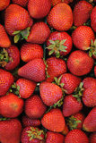 Flat of Strawberries Royalty Free Stock Photos