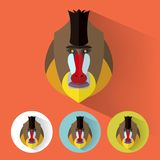 Animal Portrait / Mandrill. Flat Style Animal Portrait / Colorful Design / Mandrill Stock Photos