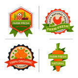 Flat style of bio organic eco healthy food label logo template and vintage vegan farm element in orange green color Stock Images