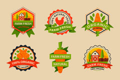 Flat style of bio organic eco healthy food label logo template and vintage vegan farm element in orange green color Royalty Free Stock Photo